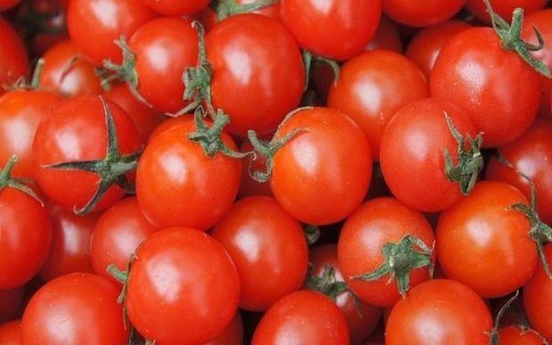 Cosa accade agli intolleranti al nichel che mangiano pomodori?